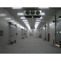 小型冷库设计方案-冰城制冷(已认证)小型冷库图片