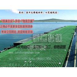PP格栅板游艇码头图片