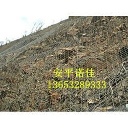 诺佳五金丝网公司(图)_钢丝绳网生产中_朔州钢丝绳网图片