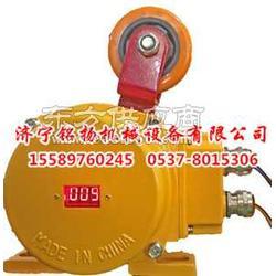 防爆料位检测器-DH-J打滑开关生产供应图片