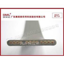 60227IEC71f-扁形电梯电缆-电梯随行电缆图片