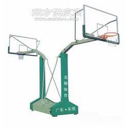 LX-011海燕移动式篮球架图片