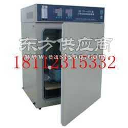 BPN-160CH二氧化碳培养箱图片