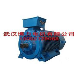 什么是变频调速电机、湖北变频调速电机、武汉博兴力图片