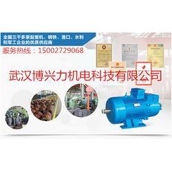 长航YZR电机-武汉博兴力机电(在线咨询)-YZR图片