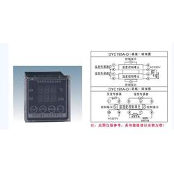 DYC195A-D智能数显温湿度控制器 温度湿度控制器 温控仪 凝露温湿度控制器图片