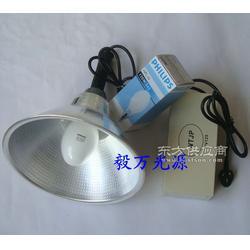 手持式固化灯 手提式UV无影灯 便携式紫外线固化灯图片