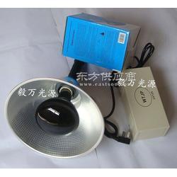 手提式荧光物质检测灯管 手提式黑光灯 隐形画图片
