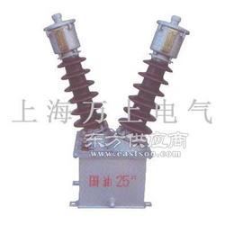 JDZXW2-35G型电压互感器/采购图片