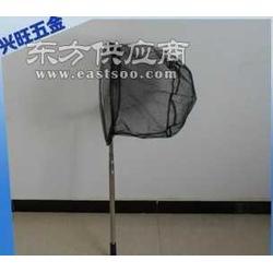 大口径密网眼抄网 不锈钢可定位捞鱼网图片