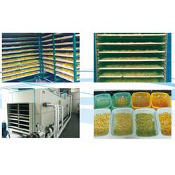 柠檬干烘干机厂家定做,湘潭市烘干机厂家,能控自动化设备公司图片