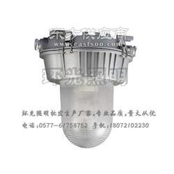 供应环光照明HGF3018防眩泛光灯图片