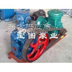 保温夹套泵.LCX38/0.罗茨泵.灌胶泵宝图泵业图片
