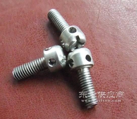 不锈钢螺丝加工厂|自攻不锈钢螺丝|螺丝现货供应,冠标(查看)图片