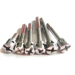 鉛封螺絲,鉛封螺絲生產冠標螺絲,訂制鉛封螺絲圖片