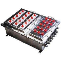 ABXMD系列不锈钢防爆配电箱图片