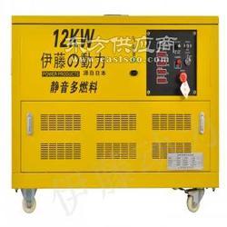 伊藤动力12千瓦汽油发电机图片
