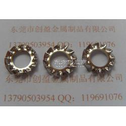 供应SUS304锯齿垫圈 重型外齿垫圈图片
