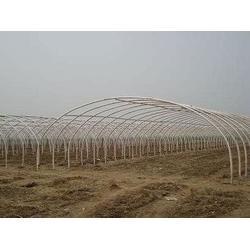 泰润农业机械,蔬菜大棚建设,新疆大棚建设图片