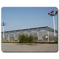广圣(图),日光温室大棚建设,甘肃温室大棚建设图片