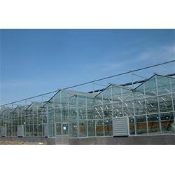 广圣(图)|新型温室大棚建设 |贵州温室大棚建设图片