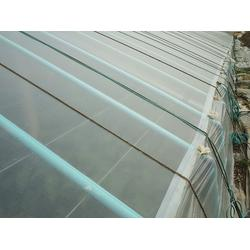 温室大棚建设预算,广圣农业(在线咨询),绵阳温室大棚建设图片