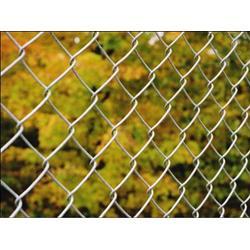 编织网隔离栅|艾斯欧提供优质编织网隔离栅|编织网隔离栅供应商图片