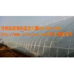 温室大棚安装,邢台市温室大棚,郑州六建图片