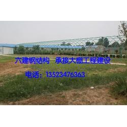 蔬菜大棚建造,阜新市蔬菜大棚,郑州六建图片