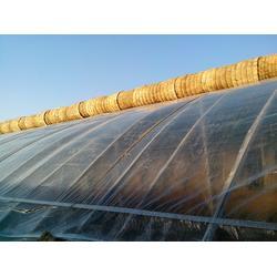 聚氯乙烯大棚膜哪里好,北京聚氯乙烯大棚膜,宝创农膜图片