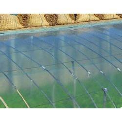 草莓大棚膜厂家-陕西草莓大棚膜-宝创农膜图片
