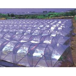 水产养殖塑料大棚膜、宝创农膜、安新县塑料大棚膜图片