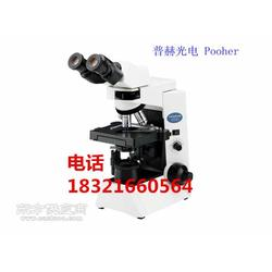BX43-12P01奥林巴斯生物双目显微镜图片