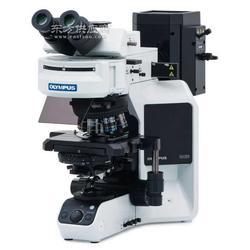进口奥林巴斯荧光显微镜CX41RFL图片