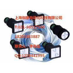 电流指示器RSJ-4图片