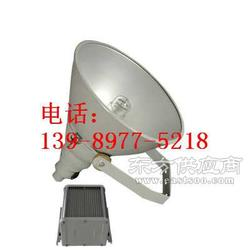 防震超强投光灯LHF2300图片