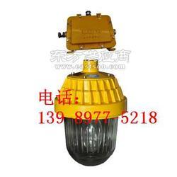 海洋王BPC8720防爆平台灯带镇流器箱,吊杆式安装图片