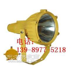 海洋王防爆灯-BTC8210防爆投光灯图片