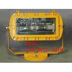 LHB-3900防爆外场强光泛光灯图片