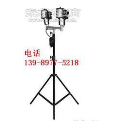 升降式照明装置GAD513图片