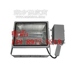 GT102-GT102-S防水防尘投光灯图片