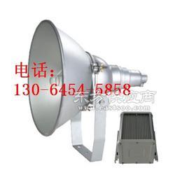 LHF2310-LHF2310防震型投光灯图片