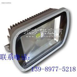 LED投射灯PN-101C-70W/厂家生产图片