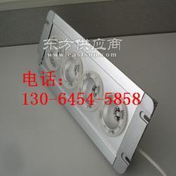 TFN7118/TFN7118防震型超强投光灯 防震投光灯图片