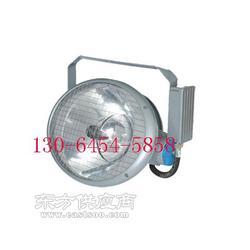 SES3130高效投光灯 2000W图片