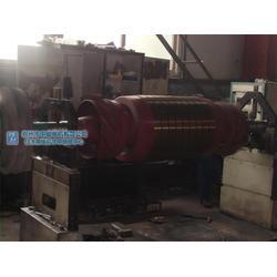 开封电机转子维修-中能电机(在线咨询)转子维修图片