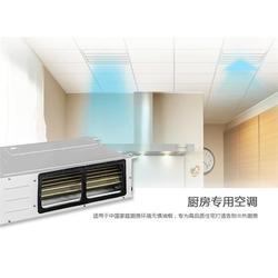商用格力中央空调,润泽空调(在线咨询),格力中央空调图片