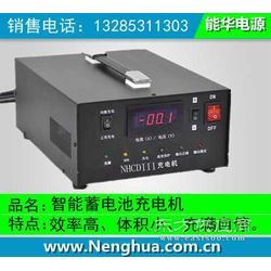 192V蓄电池充电机-智能充电机图片