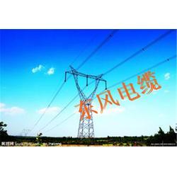 东风电缆厂家(图)_bvv线缆价_常州bvv线缆图片