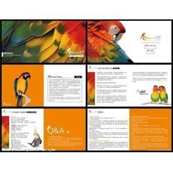 海珠印刷-合盈宣传单印刷厂-彩色宣传纸印刷图片